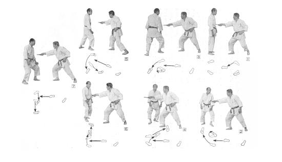 6 directions kawashi kata