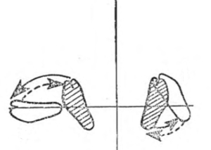feet turning left