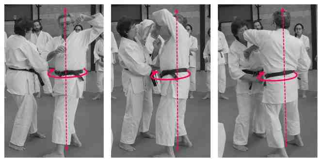 rotation central body