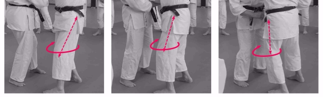 rotation legs