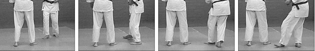 mawari foot movement